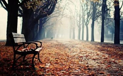 winter-park-bench-hd-wallpaper-768x480