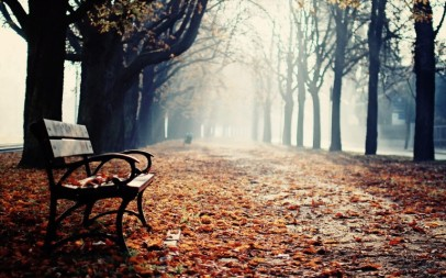 winter-park-bench-hd-wallpaper-768x480