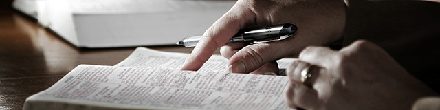 what-the-bible-says-about-the-bible_whitepaper_header